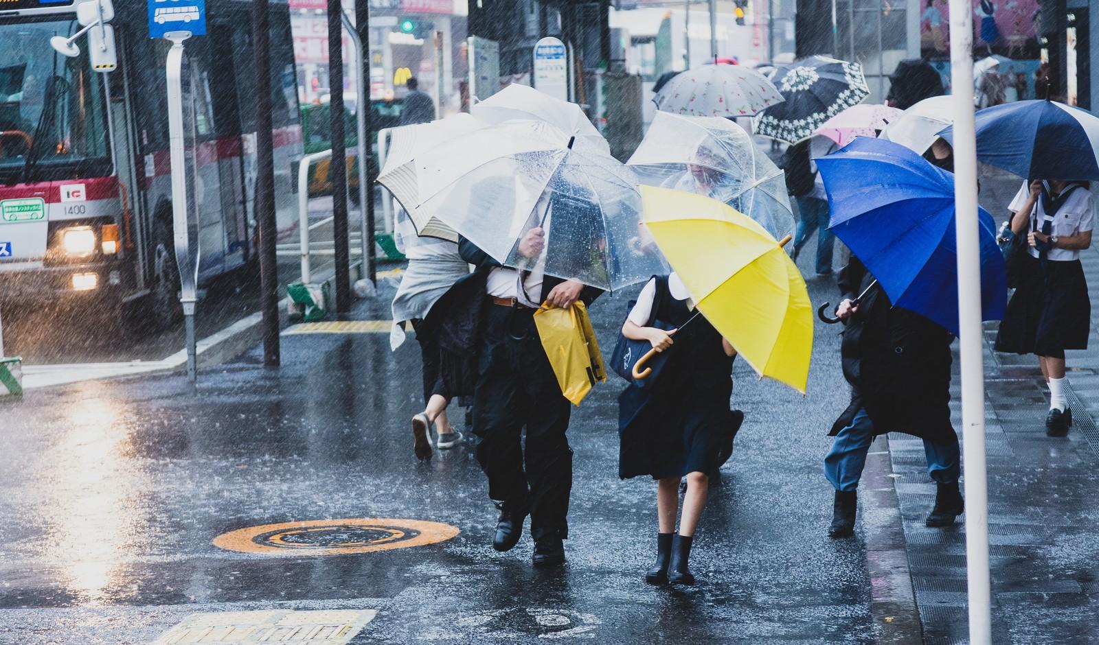 朝ドラ「おかえりモネ」物語後半の2019年大型台風のネタバレ